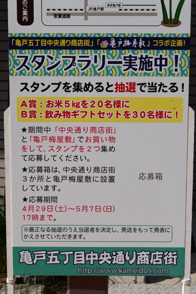 http://www.kameido5.com/event/AA0_3340.JPG