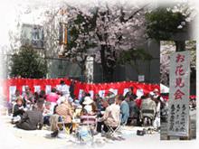 H21お花見写真5.jpg